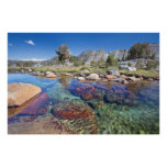 USA, California, Inyo National Forest 4 Poster