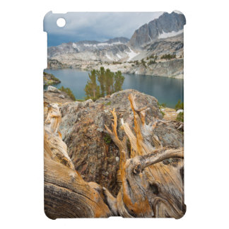 USA, California, Inyo National Forest. iPad Mini Cases
