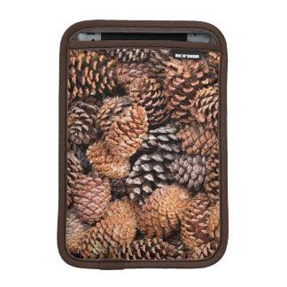 USA, California, Inyo National Forest iPad Mini Sleeves