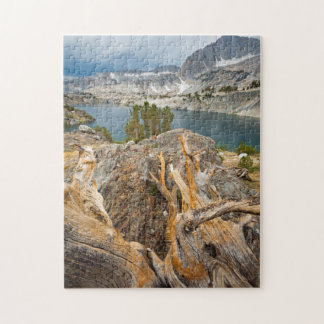 USA, California, Inyo National Forest. Jigsaw Puzzle