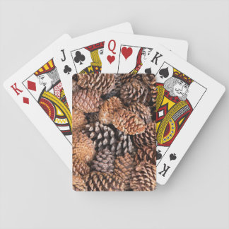 USA, California, Inyo National Forest Poker Cards