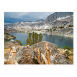 USA, California, Inyo National Forest. Postcards