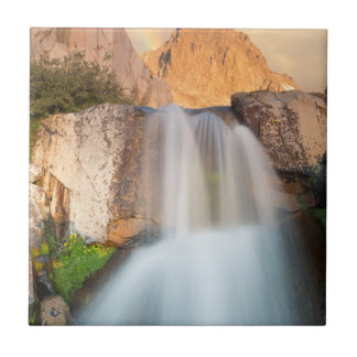 USA, California, Inyo National Forest. Waterfall Tile