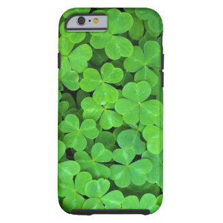 USA, California, Jedediah Smith Rewood SP. Tough iPhone 6 Case