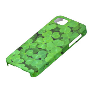 USA, California, Jedediah Smith Rewood SP. iPhone 5 Covers