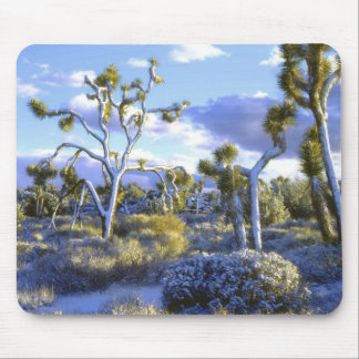 USA, California, Joshua Tree National Park. 2 Mouse Pad