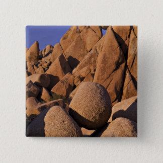 USA, California, Joshua Tree National Park. Button