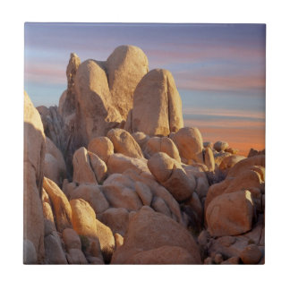USA, California, Joshua Tree National Park Ceramic Tile
