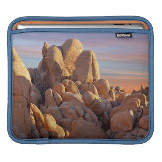 USA, California, Joshua Tree National Park iPad Sleeve