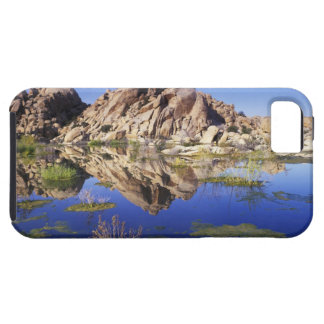 USA, California, Joshua Tree National Park, iPhone SE/5/5s Case