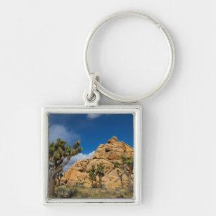 USA, California, Joshua Tree National Park Keychain
