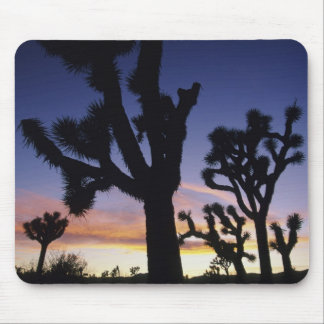 USA, California, Joshua Tree National Park, Mouse Pad