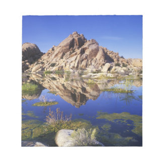 USA, California, Joshua Tree National Park, Notepad