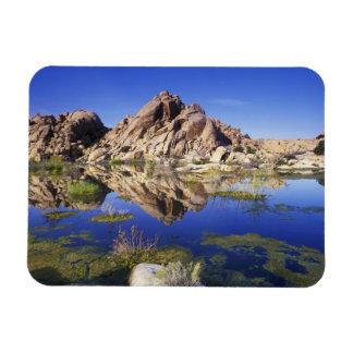 USA, California, Joshua Tree National Park, Magnets