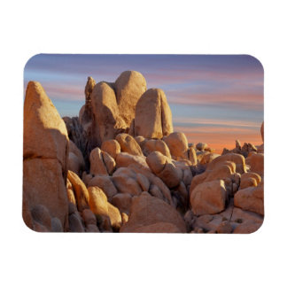 USA, California, Joshua Tree National Park Vinyl Magnet