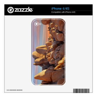 USA, California, Joshua Tree National Park Skin For iPhone 4S