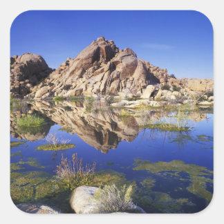 USA, California, Joshua Tree National Park, Square Sticker