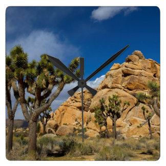 USA, California, Joshua Tree National Park Square Wall Clock