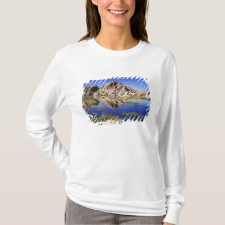 USA, California, Joshua Tree National Park, T-Shirt