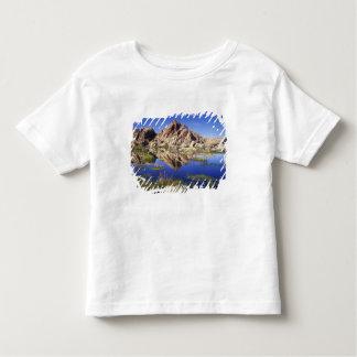 USA, California, Joshua Tree National Park, Toddler T-shirt