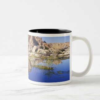 USA, California, Joshua Tree National Park, Two-Tone Coffee Mug