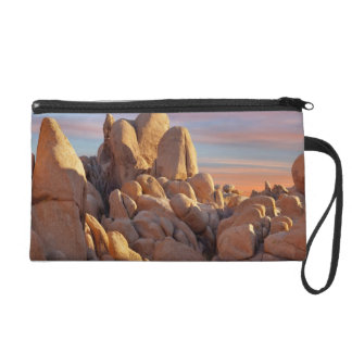 USA, California, Joshua Tree National Park Wristlet