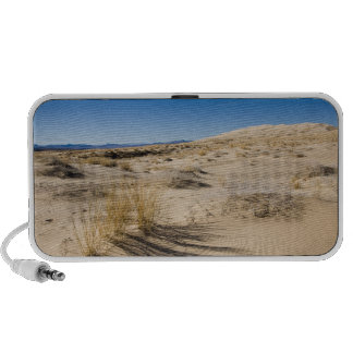 USA, California, Kelso. Mojave National iPod Speaker