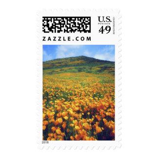 USA, California, Lake Elsinore. California Stamp