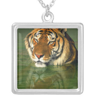 USA, California, Los Angeles County. Bengal Silver Plated Necklace