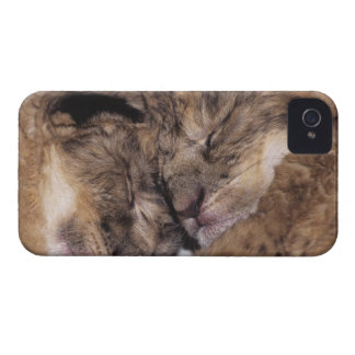 USA, California, Los Angeles County. Close-up of iPhone 4 Case