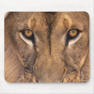USA, California, Los Angeles County. Portrait 3 Mouse Pad