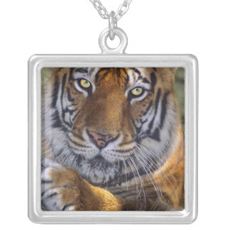 USA, California, Los Angeles County. Portrait 4 Silver Plated Necklace