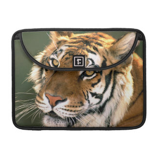 USA, California, Los Angeles County. Portrait 5 Sleeve For MacBook Pro