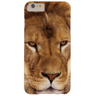 USA, California, Los Angeles County. Portrait Barely There iPhone 6 Plus Case