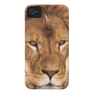 USA, California, Los Angeles County. Portrait Case-Mate iPhone 4 Case
