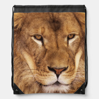 USA, California, Los Angeles County. Portrait Drawstring Backpack