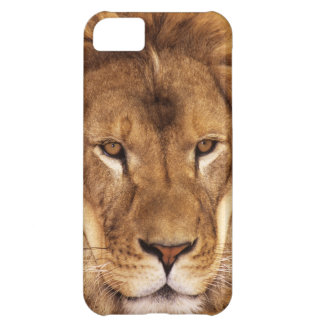 USA, California, Los Angeles County. Portrait iPhone 5C Cover