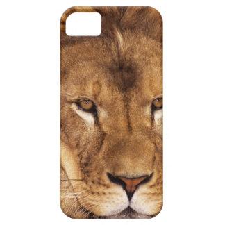 USA, California, Los Angeles County. Portrait iPhone SE/5/5s Case