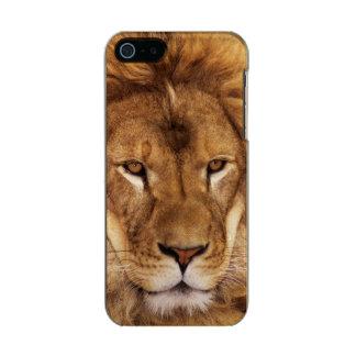 USA, California, Los Angeles County. Portrait Metallic Phone Case For iPhone SE/5/5s