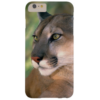 USA, California, Los Angeles County. Portrait of Barely There iPhone 6 Plus Case