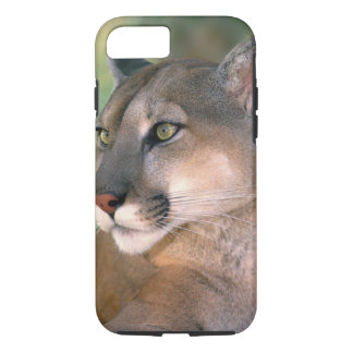 USA, California, Los Angeles County. Portrait of iPhone 8/7 Case