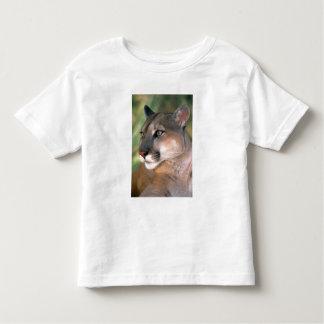 USA, California, Los Angeles County. Portrait of Shirt