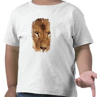 USA, California, Los Angeles County. Portrait T Shirts