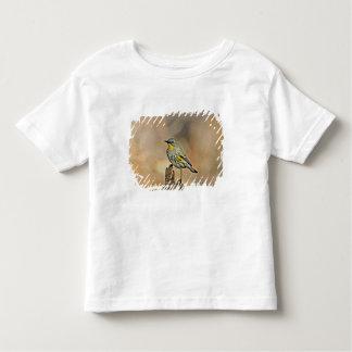 USA, California, Los Angeles, Santa Monica Toddler T-shirt