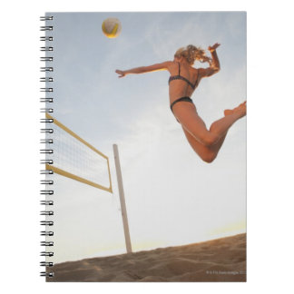 USA, California, Los Angeles, woman playing 2 Notebook