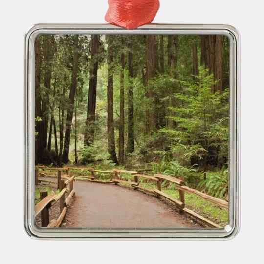 USA, California, Marin County, Muir Woods Metal Ornament