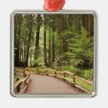 USA, California, Marin County, Muir Woods Christmas Tree Ornaments