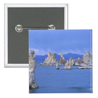 USA, California, Mono Lake Pinback Button