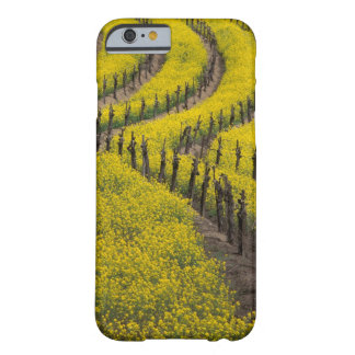 USA, California, Napa Valley, Los Carneros Ava. Barely There iPhone 6 Case