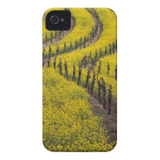 USA, California, Napa Valley, Los Carneros Ava. Case-Mate iPhone 4 Case